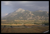Greece, North, Agriculture, fields of maize and limestone hills behind.