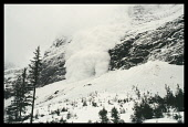 France, Alps, Trois Vallees, Avalanche  Snow crashing down mountainside towards trees.