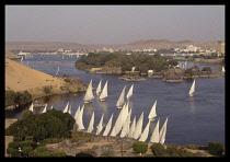 Egypt, Aswan, Feluccas on River Nile.