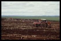 Brazil, Sao Paulo, Ourinhos, Sugar cane harvest.